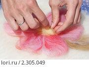 Купить «Мокрое валяние.  Создание цветного рисунка», эксклюзивное фото № 2305049, снято 9 июля 2010 г. (c) Шичкина Антонина / Фотобанк Лори