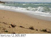 Золотые пески. Стоковое фото, фотограф Артем Коржуков / Фотобанк Лори