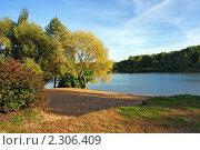 Купить «Ива на берегу небольшого озера золотой осенью», фото № 2306409, снято 26 сентября 2006 г. (c) Михаил Марковский / Фотобанк Лори