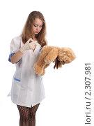 Купить «Медсестра делает укол плюшевому мишке», фото № 2307981, снято 21 мая 2010 г. (c) Евгений Батраков / Фотобанк Лори