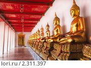 Купить «Статуи сидящего Будды в галерее буддистского храма Ват Пхо, Бангкок, Таиланд», фото № 2311397, снято 20 декабря 2010 г. (c) Николай Винокуров / Фотобанк Лори