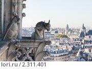 Купить «Вид на Париж с собора  Нотр дам де Пари (Notre dame de Paris). Франция.», фото № 2311401, снято 21 октября 2010 г. (c) Николай Коржов / Фотобанк Лори