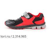 Купить «Спортивная обувь», фото № 2314965, снято 24 декабря 2009 г. (c) Losevsky Pavel / Фотобанк Лори