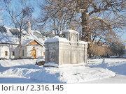 Купить «Новодевичий монастырь. Город Москва», эксклюзивное фото № 2316145, снято 31 января 2011 г. (c) stargal / Фотобанк Лори