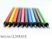 Купить «Набор цветных карандашей на белом фоне», эксклюзивное фото № 2318613, снято 18 сентября 2018 г. (c) Игорь Низов / Фотобанк Лори