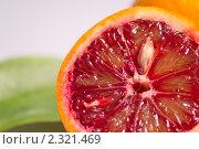 Купить «Красный апельсин», фото № 2321469, снято 5 февраля 2011 г. (c) Алексей Лучин / Фотобанк Лори