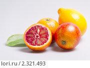 Купить «Цитрусовые», фото № 2321493, снято 5 февраля 2011 г. (c) Алексей Лучин / Фотобанк Лори