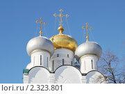 Купить «Новодевичий монастырь. Город Москва», эксклюзивное фото № 2323801, снято 31 января 2011 г. (c) stargal / Фотобанк Лори