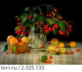 Купить «Фрукты и ягоды», фото № 2325133, снято 25 июня 2009 г. (c) Такшина Людмила Сергеевна / Фотобанк Лори