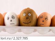 Купить «Набор яиц и киви», фото № 2327785, снято 24 сентября 2009 г. (c) Сергей Петерман / Фотобанк Лори