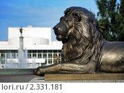 Купить «Бронзовый лев в Красноярске около Государственного Театра Оперы и Балета», фото № 2331181, снято 5 августа 2008 г. (c) Михаил Марковский / Фотобанк Лори
