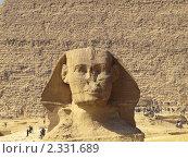 Голова Сфинкса на фоне пирамиды Хеопса (2010 год). Стоковое фото, фотограф Константин Болотин / Фотобанк Лори