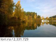 Купить «Золотая осень на чистом спокойном озере», фото № 2331729, снято 28 сентября 2008 г. (c) Александр Фисенко / Фотобанк Лори