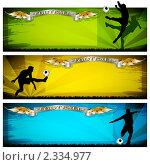 Купить «Футбольные баннеры», иллюстрация № 2334977 (c) Валерий Баришполец / Фотобанк Лори