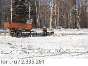 Жизнь в Сибири зимой. Стоковое фото, фотограф Лиля Сайко / Фотобанк Лори