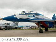 Купить «Фрагмент самолёта МиГ-29 с логотипом 1-го канала, авиасалон в Жуковском МАКС-2009», фото № 2339289, снято 21 августа 2009 г. (c) Малышев Андрей / Фотобанк Лори