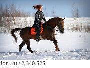 Купить «Девушка на рыжем коне скачет галопом по снегу», фото № 2340525, снято 7 марта 2010 г. (c) Наталия Кузнецова / Фотобанк Лори