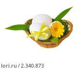 Купить «Пасхальные яйца  в корзинке», фото № 2340873, снято 8 июля 2010 г. (c) Литова Наталья / Фотобанк Лори