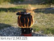 Купить «Чайник», фото № 2343225, снято 6 июля 2010 г. (c) Екатерина Дындыкина / Фотобанк Лори