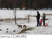 Семья с ребенком кормит птиц и собак в парке зимой (2011 год). Редакционное фото, фотограф Евгения Нижегородцева / Фотобанк Лори
