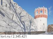 Купить «Новодевичий монастырь. Москва», эксклюзивное фото № 2345421, снято 31 января 2011 г. (c) stargal / Фотобанк Лори