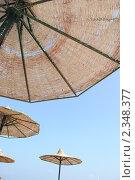 Под солнцем. Стоковое фото, фотограф Светлана Середенко / Фотобанк Лори