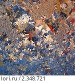 Узоры на стекле. Стоковое фото, фотограф Александр Кононыхин / Фотобанк Лори