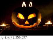 Купить «Тыква на Хеллоуин», фото № 2356397, снято 31 октября 2010 г. (c) Эльвира Максимова / Фотобанк Лори