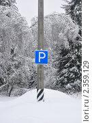 """Знак """"Парковка"""" в лесу. Стоковое фото, фотограф Абушкина Мария / Фотобанк Лори"""