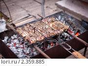 Мангал и жареный шашлык на решетке. Стоковое фото, фотограф Константин Мартынов / Фотобанк Лори