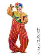 Купить «Клоун», фото № 2360021, снято 21 ноября 2009 г. (c) Сергей Сухоруков / Фотобанк Лори