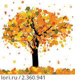Осеннее дерево цветными листьями. Стоковая иллюстрация, иллюстратор Владимир / Фотобанк Лори