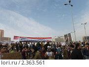 Купить «Египетская революция», фото № 2363561, снято 1 февраля 2011 г. (c) nadegdaf / Фотобанк Лори