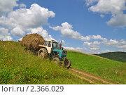 Купить «Перевозка сена», фото № 2366029, снято 9 июля 2010 г. (c) Швадчак Василий / Фотобанк Лори