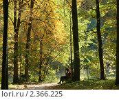 ОСЕННЯЯ  ПОРА (2007 год). Редакционное фото, фотограф вадим  гераскин / Фотобанк Лори