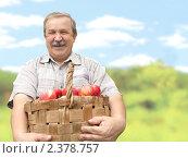 Купить «Мужчина с корзиной яблок», фото № 2378757, снято 12 октября 2010 г. (c) Лукиянова Наталья / Фотобанк Лори