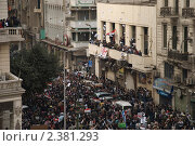 Купить «Революция в Египте», фото № 2381293, снято 1 февраля 2011 г. (c) nadegdaf / Фотобанк Лори