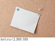 Лист картона на пробковом фоне. Стоковое фото, фотограф Алексей Климков / Фотобанк Лори