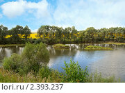 Купить «Летний пейзаж», фото № 2393237, снято 14 сентября 2008 г. (c) Татьяна Белова / Фотобанк Лори