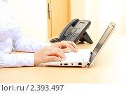 Работа за ноутбуком. Стоковое фото, фотограф Андрей Липко / Фотобанк Лори