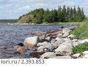 Купить «На берегу Белого моря», фото № 2393853, снято 8 июля 2010 г. (c) Михаил Иванов / Фотобанк Лори