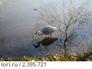 На рыбалке. Стоковое фото, фотограф Влад Куликов / Фотобанк Лори