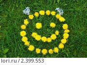 Купить «Смайлик из одуванчиков», фото № 2399553, снято 15 мая 2010 г. (c) Дарья Филимонова / Фотобанк Лори