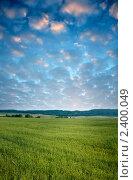 Купить «Зеленое сельское поле с посевами ржи на фоне восхода солнца», фото № 2400049, снято 3 июля 2009 г. (c) Владимир Мельников / Фотобанк Лори