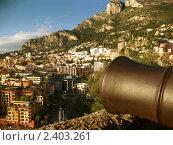 Монако (2011 год). Стоковое фото, фотограф Елена Алто / Фотобанк Лори