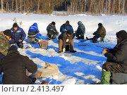 Купить «Один в окружении большинства», фото № 2413497, снято 15 января 2011 г. (c) Анатолий Матвейчук / Фотобанк Лори
