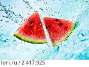 Купить «Арбуз в воде», фото № 2417925, снято 23 июня 2010 г. (c) Андрей Армягов / Фотобанк Лори