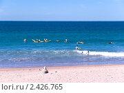 Обучение серфингу на пляже в Менли в пригороде Сиднея (2010 год). Стоковое фото, фотограф Elena Monakhova / Фотобанк Лори