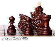 Шахматы на шахматной доске. Стоковое фото, фотограф Pshenichka / Фотобанк Лори