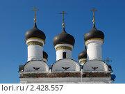 Купить «Москва. Церковь Покрова Пресвятой Богородицы в Братцево», эксклюзивное фото № 2428557, снято 9 марта 2011 г. (c) lana1501 / Фотобанк Лори